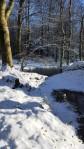winterlust 06