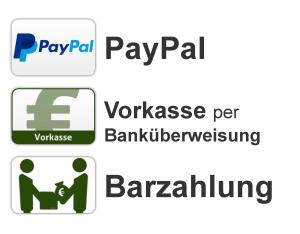 Zahlungsmöglichkeiten lebensfluesterin.com